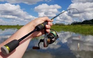 Как выбрать хороший недорогой спиннинг для джига и ловли щуки